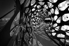 access (heinzkren) Tags: schwarzweis blackandwhite bw sw monochrome wien vienna austria kagran zugang gate panasonic weitwinkel lumix eingang brücke bridge modern light shadow building übergang construction architektur architecture geländer railing weg way