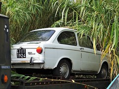 1968 Fiat 850 Special (Alessio3373) Tags: car oldcars classiccars autoshite youngtimers rust rusty rustycars targhenere blackplates unused unloved forgotten forgottencars fiat fiat850 fat850special