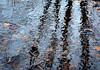 En eau froide (mcastonguay60) Tags: automne reflet montréal québec canada abstraction