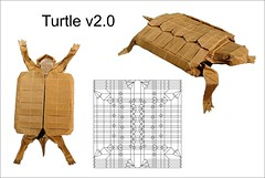 Turtle v2.0 (Mdanger217) Tags: max danger origami turtle cp