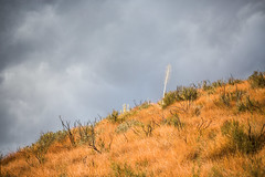 Big Tujunga Canyon (Thomas Hawk) Tags: america angelesnationalforest bigtujungacanyon california losangeles southerncalifornia tujunga usa unitedstates unitedstatesofamerica fav10