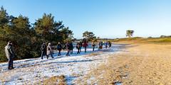 _Z1A3192 (doevos) Tags: hogeveluwe npdhv nationaalparkdehogeveluwe veluwe wandelfit