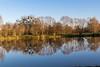 Milly sur Thérain (roland.grivel) Tags: millysurthérain oise picardie beauvaisis etang reflet 60