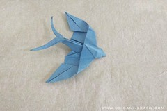 16/365 Swallow by Mindaugas Cesnavicius (origami_artist_diego) Tags: origami origamichallenge 365days 365origamichallenge swallow