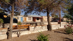 184 Toconao  pueblo (roving_spirits) Tags: chile atacama atacamawüste atacamadesert desiertodeatacama désertcôtier küstenwüste desiertocostero coastaldesert
