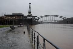 Hochwasser am Main-bw_20180104_7207.jpg (Barbara Walzer) Tags: 070118 hochwasser main mainufer
