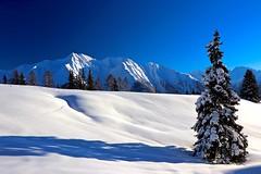 Silence (sylviafurrer) Tags: mountain berge schnee snow blau blue weiss white alpen alps switzerland aletsch wallis valais