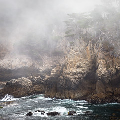 Point Lobos (Scriblerus) Tags: pointlobos california montereybay coast mist