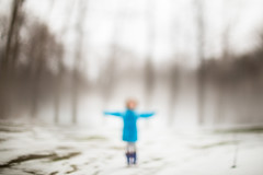winter scarecrow (trois petits oiseaux) Tags: winter freelensed childhood