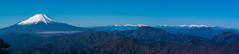富士と南アルプス@檜洞丸西側