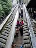 P1130686-2 (Simian Thought) Tags: xitang china watertown