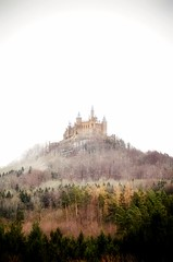 Castle on the Hill (DrQ_Emilian) Tags: landscape view hill castle woods trees contrast light colors details fog foggy nature outdoors travel hohenzollern tübingen badenwürttemberg germany europe atraction explore building old architecture