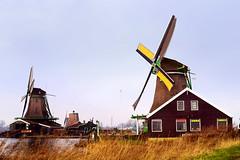 Windmills (josebrito21) Tags: josébrito josebrito2 josébritophotography josébritofotografia windmills amsterdam holland moinhos vento moinhosdevento landscape paisagem