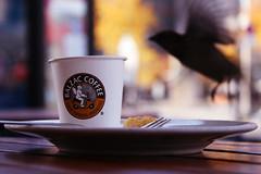 Balzac Coffee (Ismail - humanistic misanthrope ツ) Tags: berlin potsdamer platz balzac coffee covfefe spatz kaffee und kuchen bird bokeh canon eos 400d flickrunited peace kartpostal freephotos flickr award super bronze look achtung dasphotoenthältproduktplatzierung werbunghalt