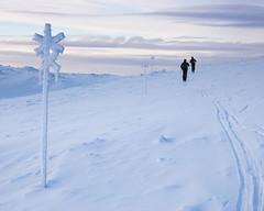 Sonfjället Nationalpark I (Gustaf_E) Tags: berg clouds fjäll härjedalen högfjäll kväll landscape landskap moln nationalpark skidor snow snö sonfjället sverige sånfjället tur turskidor vinter fluctus