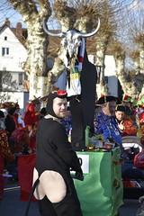DSC8051 (Starcadet) Tags: dieburg dibborsch fastnacht dibojerfastnacht karneval prty brauchtum parade umzug fastnachtszug fastnachtdienstag fasching fasnet kostüme verkleiden südhessen cosplay spas humor clowns