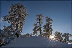 Larra-Belagua018 (Fermin Ezcurdia) Tags: larra belagua navarra pirineo nieve pyrenees esquinordico arlasarette anie