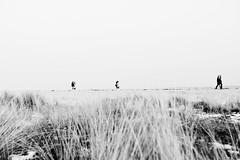 Strandspaziergäger (JVBHH) Tags: strand beach ostsee baltic sea scharbeutz schwarz weis blackandwhite nikon d810 24–70mm white weiss