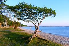 Praia do Balneário (lacustre) Explore 20,2018 (Edésyo Moreira, #UmPaisagista) Tags: