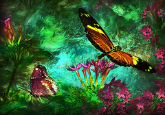 Butterflies Matter (D'ArcyG) Tags: butterfly insect garden flower pollen leaves bloom green yard summer textured impression artistic colorful vivid two