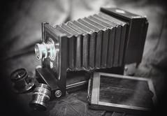 Kodak 33 View Agfa-Ansco Universal Portrait (rrunnertexas) Tags: kodak 33 5x7 petzvallens barrel lens eastman largeformat bw vintagecamera antiquecamera film arista edu agfaansco universal junior brasslens rodinal