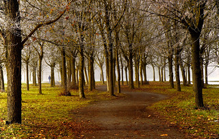 Nice walk.