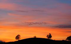 zachód-słońca Sonnen-Untergang Sunset (arjuna_zbycho) Tags: zachódsłońca sonnenuntergang sunset sunnsets sunrises clouds sky himmel niebo chmury badenbeiwien