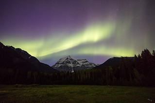 Aurora Over Mt Robson
