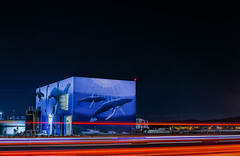 isobel sending and recieving (pbo31) Tags: livermore california eastbay alamedacounty nikon d810 color black dark night boury pbo31 lightstream motion traffic roadway whales art mural darren greenwood watertreatment plant industrial giant ocean blue red 2018 winter isabel
