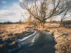 February frosts (xkolba) Tags: river floe sunset riverbank outdoor mood podlasie february landscape winter frost tree mobilephotography huaweip9 ice