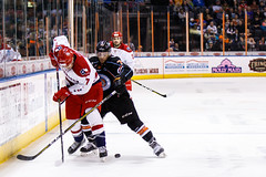 "Kansas City Mavericks vs. Allen Americans, February 24, 2018, Silverstein Eye Centers Arena, Independence, Missouri.  Photo: © John Howe / Howe Creative Photography, all rights reserved 2018 • <a style=""font-size:0.8em;"" href=""http://www.flickr.com/photos/134016632@N02/39790820414/"" target=""_blank"">View on Flickr</a>"