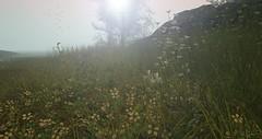 [ Grasshopper... ] (Just.Tate) Tags: fameshed keke hpmd heart hayabusa landscape