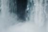 Vida y elementos (julien.ginefri) Tags: argentina argentine america latinamerica southamerica cataratas iguazu iguaçu brasil brazil fall waterfall cascada
