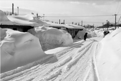 Neighborhood (threepinner) Tags: mikasa hokkaidou hokkaido northernjapan japan winter snow house pentax pentaxm mzm 50mm f17 kodak microfilm imagelink hq selfdeveloped 三笠 北海道 北日本 日本