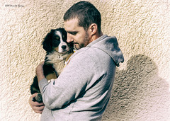 DSC00274-Edit (sportsHUN) Tags: landscape babys dogs puppies portre