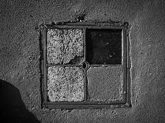 URBANA 25_HR 21 (Domenico Cichetti) Tags: penf1966 fomapan200 rodinal bustoarsizio monocrome bw selfdevelop analog analogicait bn argentique blackandwhite blackwhite