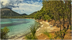 Cap de Formentor (Heinze Detlef) Tags: capdeformentor mallorca wasser meer insel palmen pflanzen wolken berge baleareninsel urlaub urlauber sonne ausflüge