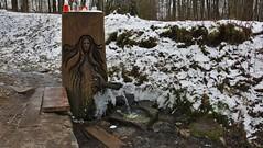 Tereza spring (Karel Suchánek) Tags: spring tereza kynžvart winter frost ice snow lumix lx100