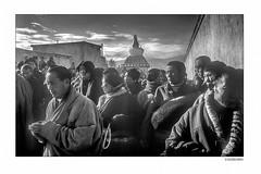 Believers007 (siggi.martin) Tags: tibet tibeter tibetans asien asia tradition westtibet westerntibet menschen people viele many buddha buddhismus buddhism schwarzweiss blackandwhite pilger pilgrims glaube belief tibetisch tibetan tracht nationalcostume gesicht face gesichtsausdruck facialexpression landschaft landscape scenery berg mountain berge mountains umrunden walkround heilig holy tschörten chorten gehen walk beten pray losar tibetannewyear