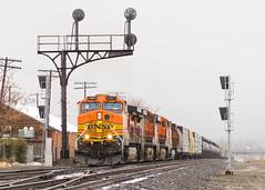 BNSF 4987 @ Tehachapi, CA (Mathieu Tremblay) Tags: tehachapi california unitedstates us bnsf burlingtonnorthernsantafe up unionpacific mojave subdivision railroad railway chemindefer pass signal cantilever fog brume ge generalelectric c449w 4987 train locomotive sony sal70300g a65