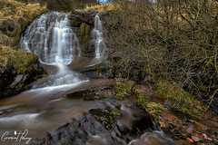 Caerfanell Waterfall (geraintparry) Tags: d500 nikon sigma 1750 sigma1750 south wales waterfall waterfalls landscape water outdoor falls long exposure river brecon nature naturephotography beacons national park geraint parry geraintparry tree trees rock rocks caerfanell talybont