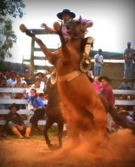 Eduardo Tavares e Zorzal de La Cobiçada (Eduardo Amorim) Tags: gaúcho gaúchos gaucho gauchos cavalos caballos horses chevaux cavalli pferde caballo horse cheval cavallo pferd pampa campanha fronteira quaraí riograndedosul brésil brasil sudamérica südamerika suramérica américadosul southamerica amériquedusud americameridionale américadelsur americadelsud cavalo 馬 حصان 马 лошадь ঘোড়া 말 סוס ม้า häst hest hevonen άλογο brazil eduardoamorim gineteada jineteada