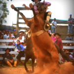 Eduardo Tavares e Zorzal de La Cobiçada thumbnail