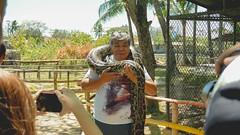 Island Cove Cavite Mermaid Go Kart Fishing Village (22 of 66) (Rodel Flordeliz) Tags: islandcove islandcovecavitecavite gocarting imuscavite smmoa islancove gilbertremulla mermaid belikeamermaid gokart horsebakcriding python snake amenities rooms spa fishingvillage