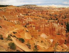20160821_43 A piece of trail   Bryce Canyon, Utah (ratexla) Tags: ratexlasgreentortoisetrip2016 ratexlascanyonsofthewesttrip2016 greentortoise canyonsofthewest 21aug2016 2016 canonpowershotsx50hs bryce brycecanyon utah usa theus unitedstates theunitedstates america northamerica nordamerika earth tellus photophotospicturepicturesimageimagesfotofotonbildbilder wanderlust travel travelling traveling journey vacation holiday semester resaresor ontheroad hiking hike sommar summer beautiful nature landscape scenery scenic sandstone mountain mountains berg canyon canyons trail trails orange hoodoo hoodoos