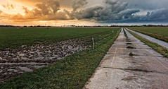 Duality (Alfred Grupstra) Tags: nature ruralscene agriculture cloudsky sky landscape outdoors field grass farm land summer scenics nopeople sunset cloudscape blue nonurbanscene meadow road