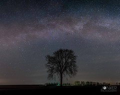 'Milkyway chaser' (melvinjonker) Tags: longexposure nature landscape sony groningen holland tree nightshot nightscape stars milkyway