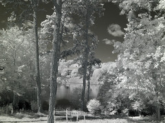 IMG_2569 (Dan Correia) Tags: marthasvineyard island infrared pond reflection shadows clouds 15fav topv111 addme200