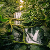 The little fall (Sean X. Liu) Tags: waterfall nature orlando disneyworld animalkingdom park themepark