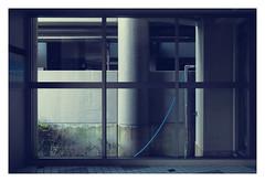 Blue hose (aoishikaku) Tags: hose blue grid window composition nopeople line